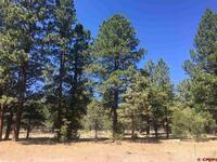 S. Badger Trail - Lot 419