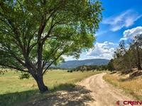 6392  Road 41 Mancos, CO 81328