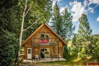 109  Camprobber Drive Pagosa Springs, CO 81147