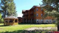 109  Ace Court #203 Pagosa Springs, CO 81147