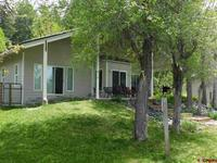 51  Little Beaver Place Pagosa Springs, CO 81147