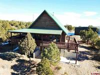 258  Cameron Pass Road South Fork, CO 81154