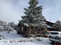 754  Milner Pass Road South Fork, CO 81154