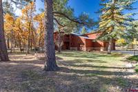 53  Stone Court Pagosa Springs, CO 81147