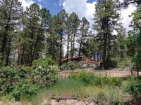 38  Spruce Circle Pagosa Springs, CO 81147