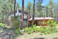 37  Berry Drive Bayfield, CO 81122