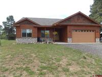 50  Woodsman Dr. Pagosa Springs, CO 81147
