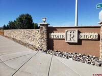 3511  Woodford Place Montrose, CO 81401