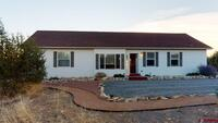 62170  Tres Coyote Trail Montrose, CO 81403