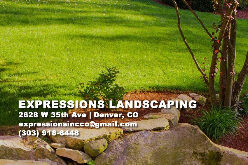 Expressions Landscaping