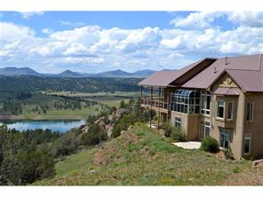 317 S Lakeview Forest Heights Florissant, CO 80816