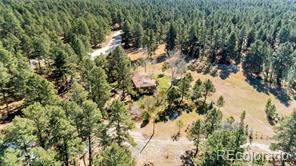 36725  Forest Trail
