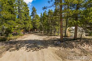 252  Long Trail Road
