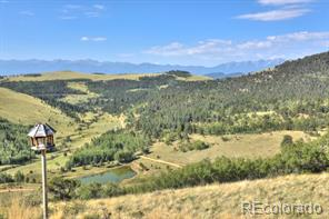 2423  Anteolpe Trail Cotopaxi, CO 81223