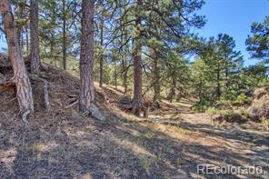 County Road 73 Calhan, CO 80808