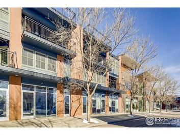 1110  Neon Forest Circle #d