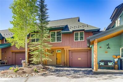 226  Alpen Rose Place #8724 Keystone, CO 80435
